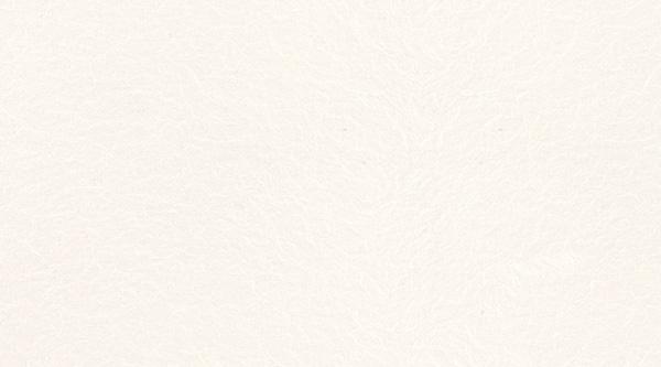 Nolte Küchen Arbeitsplatte >Weiß (S79)